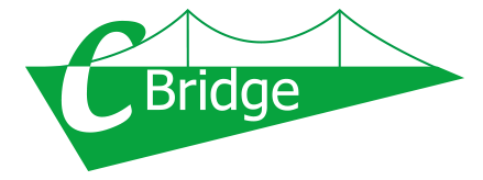 C-BRIDGE Inc